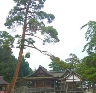 Shirahige Jinja Shrine