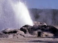 Shoshone Geyser
