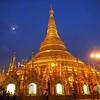 Shwedagon Pagoda In Yangon - Night Light