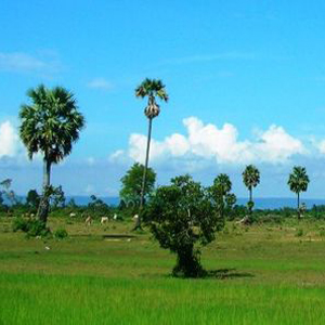 Phnom Kulen Hill - Siem Reap - Cambodia