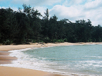 Similajau National Park