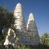Siwa Bird Towers