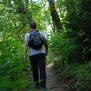 Six Foot Track Start - Te Urewera National Park - New Zealand