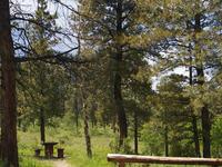 Skull Creek Campground