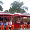 Skyride With Train Cars In Foreground