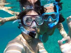 Safari Blue Photos