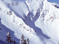 Snowbird Ski and Summer Resort