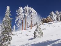 Snow Valley Ski Resort