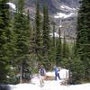 Snyder Lake Trail