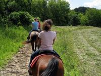 Snyder Ridge Trail