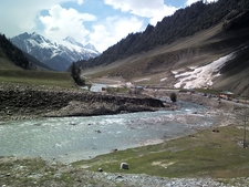 Sonamarg Kashmir