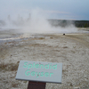 Splendid Geyser - Yellowstone - USA