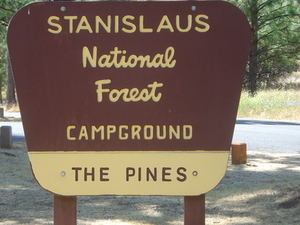 Stanislaus Pines Campground