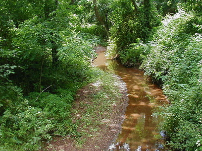 Steep Hill Brook