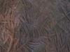 Stone Age Carving Inside Edakkal Cave