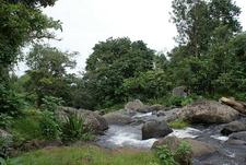 Stream At Marangu - Kilimanjaro