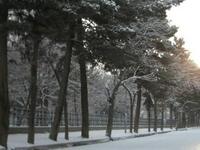 Shar-e Naw Park