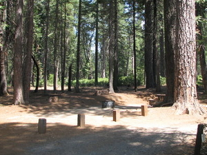 Stumpy Meadows Campground