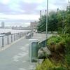 Stuyvesant Cove Park