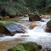 Sulphide Creek
