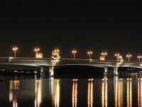 Sultan Mahmud Bridge