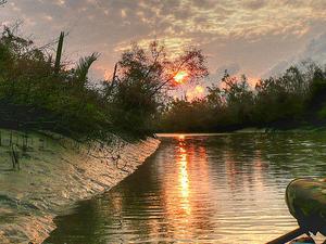 Sundarban Package Tour Photos