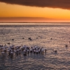 Sundown At Walvis Bay - Namibia