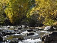 Sunlight Creek