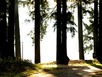 Sunrise Nature Trail