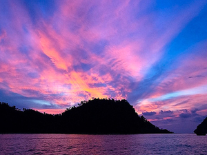 Pleasant Andaman Photos