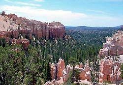 Swamp Canyon Trail