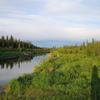 Swanson River