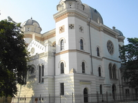 Synagogue-Vasilescu Collection