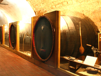 Szent Antal Winecultural Exhibition