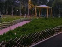 Sai Tso Wan Recreation Ground