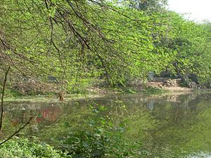 Sanjay Lake