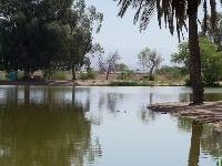 Silverbell Lake