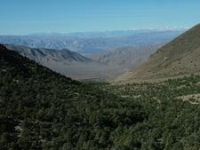 Sierras From Wildrose Mtn