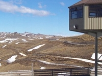 Snow Farm