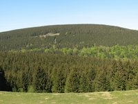 Rehberg