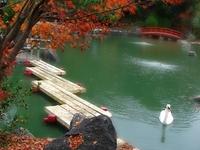 Auburn Botanical Gardens