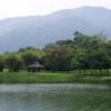 Taiping Lake Gardens