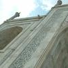 Taj Herringbone