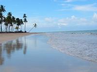 Tamandaré Beach