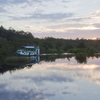 Tanjung Puting National Park Sunset