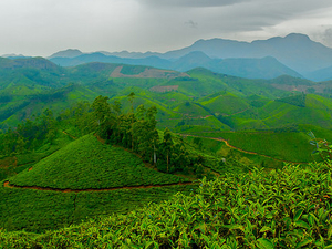 5 Days Kerala Leisure Tour Package Photos