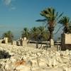 Megiddo Stables