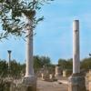 Tempio Italico Canosa