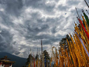 Bumthang Owl Trek Photos