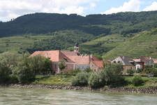 Terraced Wachau Vineyards